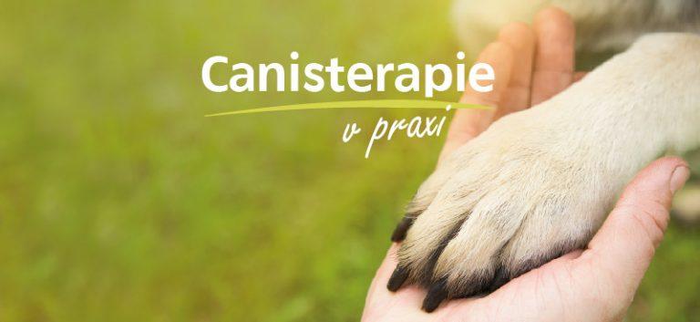CANISTERAPIE V PRAXI